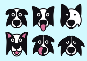 vettore gratis border collie