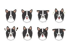 Vector Border Collie gratis