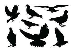 Vecteurs de silhouette de pigeon