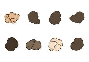 Gratis Truffles Vector