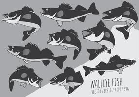 Peixes da vara e Walleye Vectors