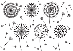 Hand Drawn Blowball Vector