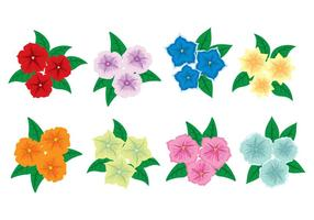 Petunia Flower Icons vector