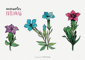 Aquarelle de pétunia Vector Set
