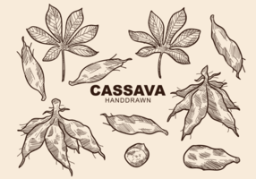 Free Hand Drawn Cassava Vectors