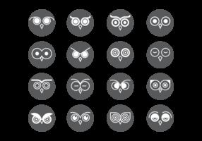 Coruja Ojos iconos del vector