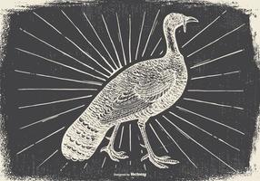 Vintage Wild Turkey Illustration
