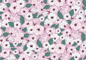 Vettore di fiori rosa petunia
