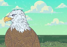 Wild Eagle Vector Background