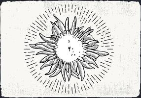 Free Hand Drawn Sunflower Background