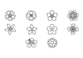 Plum Blossom Icon Vector