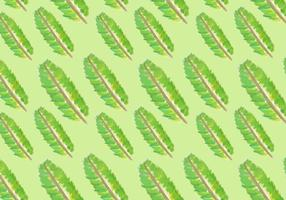 Aquarelle Banana Leaf Vecteurs