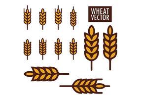 Weizen Vektoren