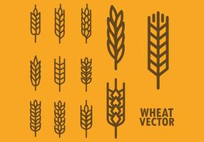 Wheat Vector Icons