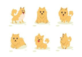 Pomeranian Dog Karakter Pose Vector