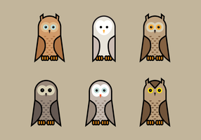Brown Vector Owls