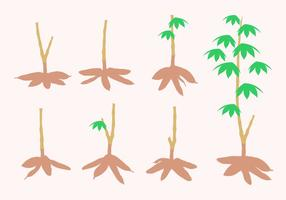 Cassava Tree Free Vector