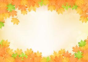Orange Fall Maple Leaves Vector