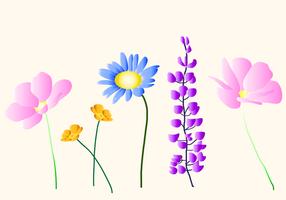 Vectores de flores silvestres