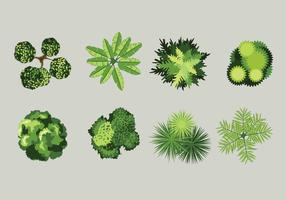 Bird's Eye View Of Plants With Grey Background vector