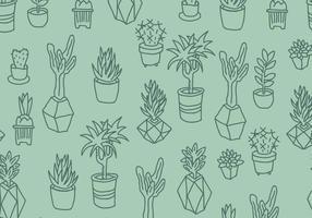 Vert Cactus et Succulentes Motif