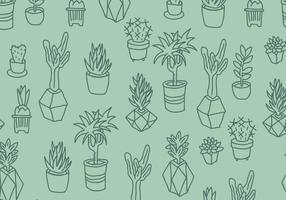 Green Cactus en vetplanten Pattern