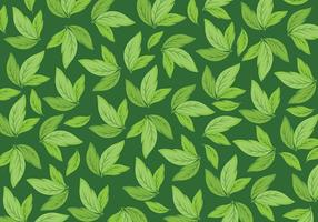 Free Background Daun Vector
