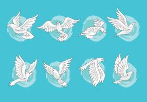 Set of Paloma or Dove Vectors with Hand Drawn Style