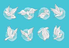 Conjunto de Paloma o Dove Vectores con estilo dibujado a mano