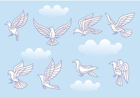 Stylized Vector Paloma or Dove Variations