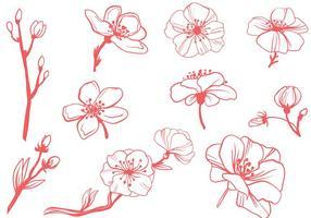 Fria blomning Vektorer
