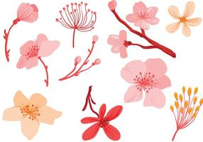 Livres-de-rosa Flores Vetores