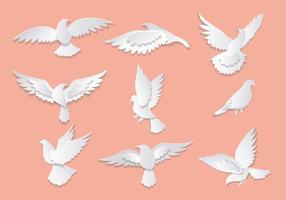 Dove ou Paloma paix Symboles Vecteurs
