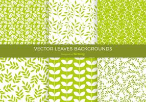 Vert Leaves Background Pack Vector