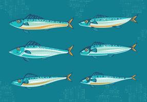 Conjunto de sardina o sardina con vectores estilo de la vendimia