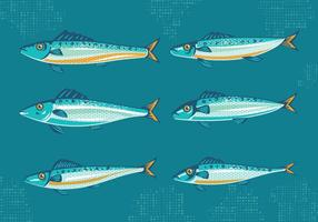Set van Sardine of sardines met vintage style Vectoren