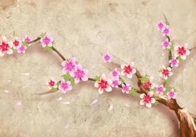 Estilo japonés Flor de durazno Flor de fondo vector