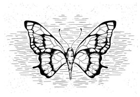 Free Hand Drawn Vector Butterfly