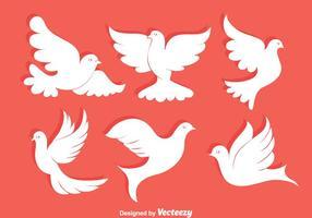 Vector blanco de la paloma Colección
