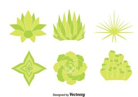 Green House Plant Vectors