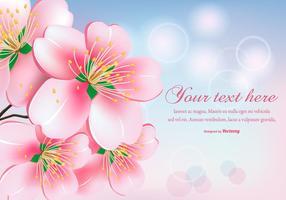 Beautiful Peach Blossom Flowers Illustration