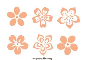 Vector Peach Blossom Flowers
