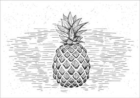 Gratis Hand Drawn Vector Pineapple Illustration