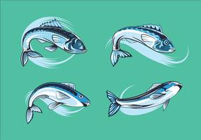 Set Fresh Sardines vector