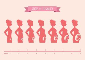 Ilustración del vector de siluetas femeninas de embarazadas