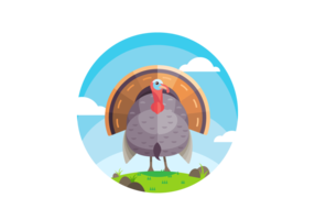 Beautiful Turkey Vector