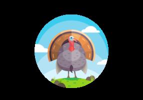 Vector Belle Turquie