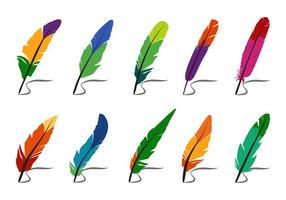 Plumas de colores y vectores Pluma