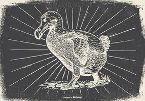 Vintage Dodo Bird Illustration