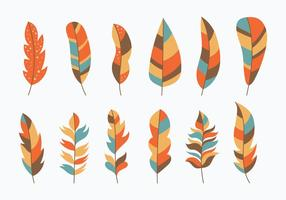 Pluma Collection vector